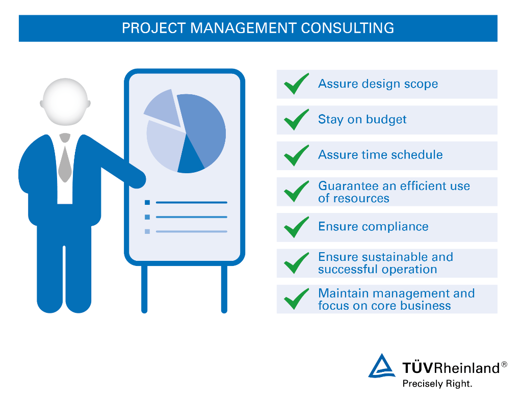 Image result for project management consultant