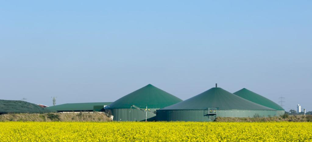 Biogas Plants | WO | TÜV Rheinland